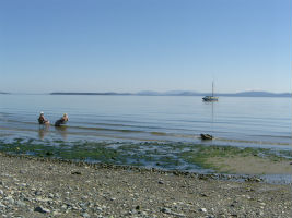 Relax in Cordova Bay